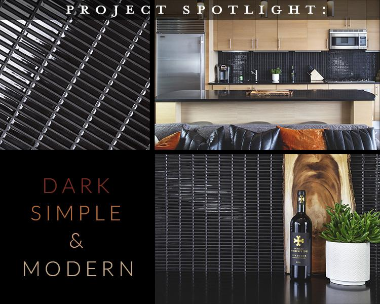Project Spotlight: Dark, Simple, Modern Kitchen